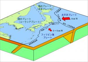 c_plate_jp