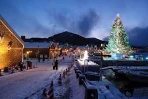 hakodate Christmas fantasy3
