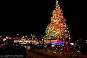 hakodate Christmas fantasy6