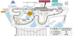 fuji marathon festa3