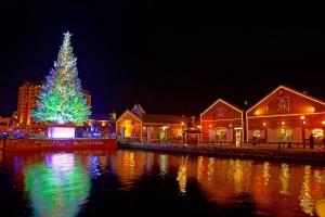 hakodate Christmas fantasy2