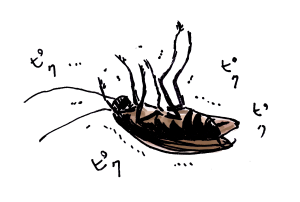 GOKIBURI-KILL7