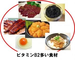 ビタミンB2多い食材2-1024x825